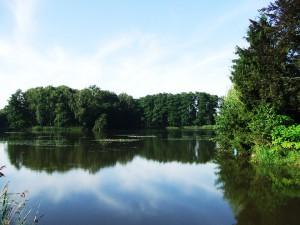 Hammerteich-Kreba